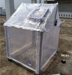 solar-greenhouse-dryer