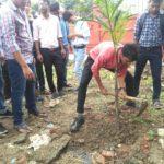 TREE PLANTATION DRIVE AT ODGI